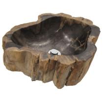 Fosil leseni umivalnik
